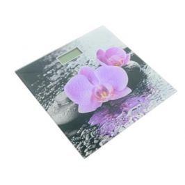 Весы напольные Supra BSS-2001 рисунок розовый