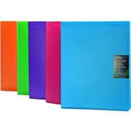 Папка с 60 файлами COLOURPLAY, ф.A4, 0,9мм, прозрачная, ассорти