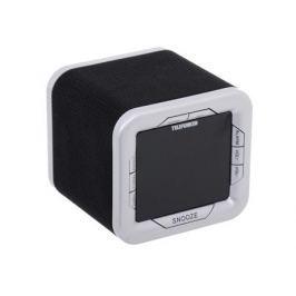 Часы с радиоприемником TELEFUNKEN TF-1505 (черный с белым)