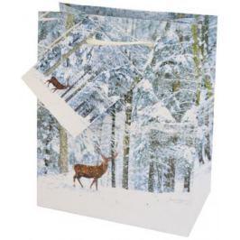 Пакеты подарочные бумажные ламинированные, 111X137X62 мм. 1