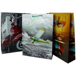 Пакет подарочный Winter Wings BG6750M 33х46х10.2 см