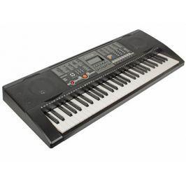 Синтезатор TESLER KB-6180 61 клавиша, большой LCD дисплей, 128 тембров/128 ритмов, 8 звуковых эффектов, 30 демопесен,автоаккомпанемент, запись