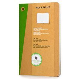Блокнот Moleskine EVERNOTE SKQP416EVER Large 130х210мм обложка картон 80стр. линейка бежевый 2шт
