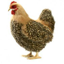 4588 Курица палевая, 35 см