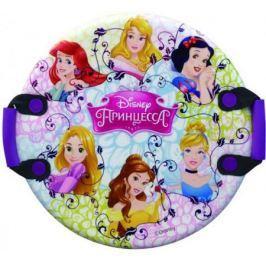 Ледянка Disney Принцессы (круглая, с плотными ручками), 54 см