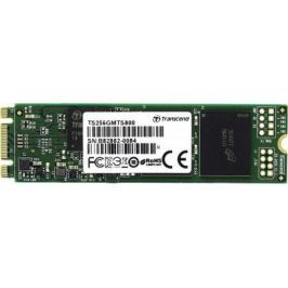 Твердотельный накопитель SSD M.2 256Gb Transcend MTS800 Read 560Mb/s Write 310mb/s SATAIII TS256GMT