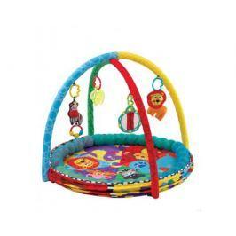 Развивающий центр Playgro «Цирк»