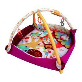 Развивающий коврик-бассейн MERX «Додо и Кики»