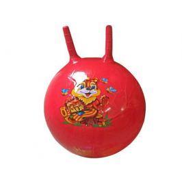 Мяч-попрыгун Veld Co. с двумя ручками 50 см