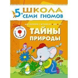 Книга «Школа Семи Гномов: Шестой год обучения. Тайны природы»
