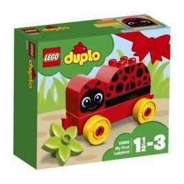 Конструктор LEGO DUPLO My First 10859 Моя первая божья коровка