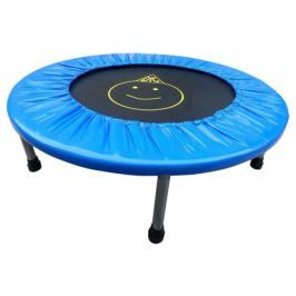 Батут DFC «Trampoline Fitness» 102 см