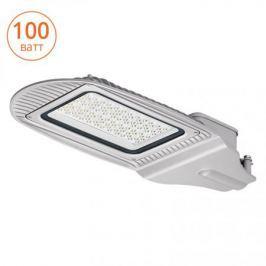 Wolta Уличный светодиодный светильник STL-100W01 IP65, 5000-5500 К,алюминий, линза