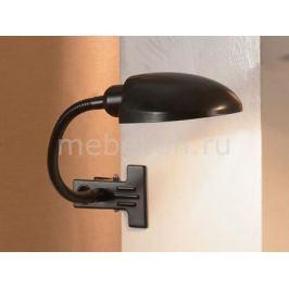 Настольная лампа офисная Lussole Roma LST-4214-01