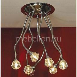 Потолочная люстра Lussole Atripalda LSQ-2003-07