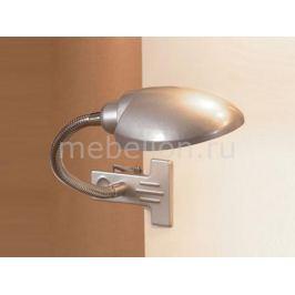 Настольная лампа офисная Lussole Roma LST-4264-01