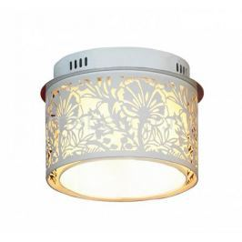 Накладной светильник Lussole Vetere LSF-2307-04