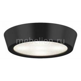 Накладной светильник Lightstar Urbano 214972
