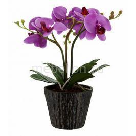 Растения в горшке Globo FlowerPower 28003