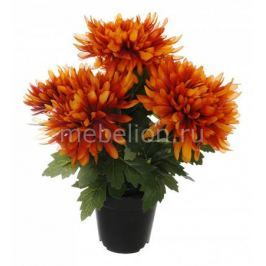 Растение в горшке Home-Religion (32 см) 58005700