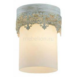 Накладной светильник Lussole LSP-0050