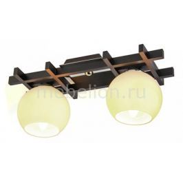 Накладной светильник Дубравия Виола 196-42-12