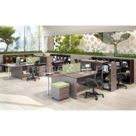 Гарнитур офисный Skyland Xten