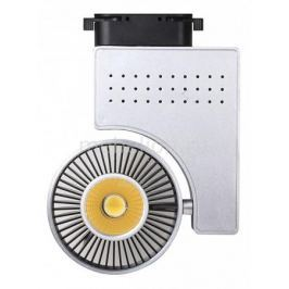 Светильник на штанге Horoz HL821L 018-001-0023 Серебро