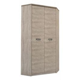 Шкаф платяной Анрекс Diesel 2D