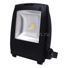 Настенный прожектор Horoz HL173L 068-002-0050 COB LED Черный
