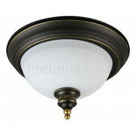 Накладной светильник Arte Lamp Bonito A9518PL-2BA