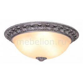 Накладной светильник Donolux C110154/3-50