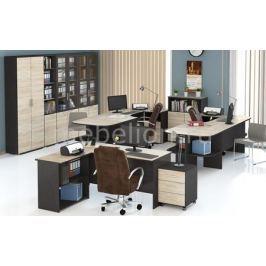 Гарнитур офисный Мебель Трия Успех-2 ГН-184.005