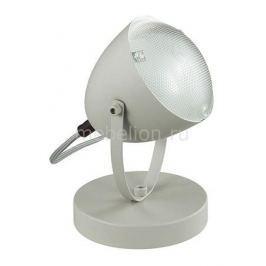 Настольная лампа декоративная Lumion Belko 3669/1T