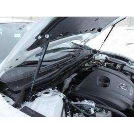 Упор капота (комплект) ТСС MAZ615-02Y для Mazda 6 (2015 - 2017)