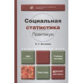 Бычкова С. Социальная статистика. Практикум. Учебное пособие для академического бакалавриата