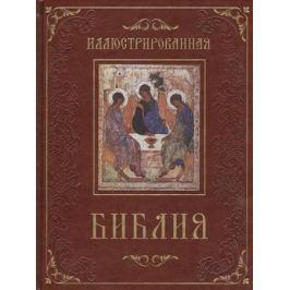 Бутромеев В., Бутромеев В. (ред.) Иллюстрированная Библия