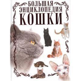 Смирнов Д. Большая энциклопедия кошки