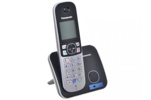 Телефон DECT Panasonic KX-TG6811RUB Функция радио-няня (доступна при наличии второй и более трубок) Телефония