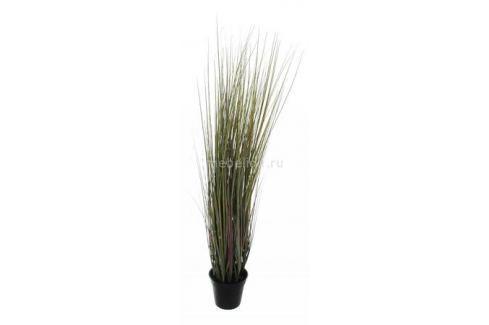 Растение в горшке Home-Religion (90 см) Трава 58006100 Растения в горшке