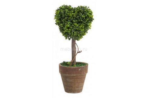 Растение в горшке DG-Home (21 см) Amour DG-D-811A Растения в горшке